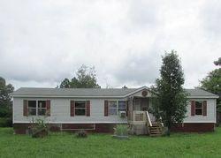 Ludville School Rd, Ranger GA