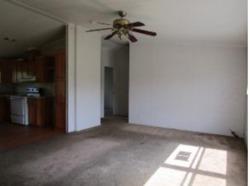 County Road 4316, Larue TX