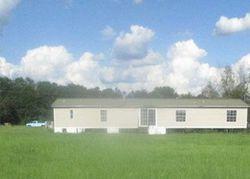 Birchwood Ln, Ray City GA