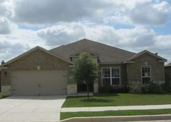 Callalily, New Braunfels TX