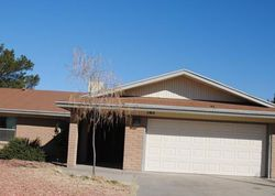 Foreclosure - Pinehurst Dr - Santa Teresa, NM