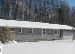 S Skiview Cir, Cedar MI