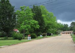 Weeping Willow Rd, Abbeville AL