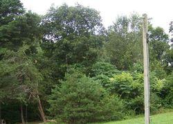 County Road 271, Niota TN