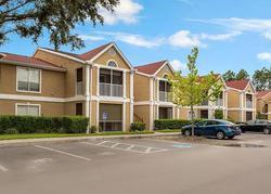 Highland Oak Dr Uni, Tampa FL