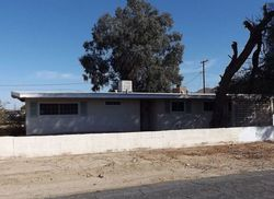Eucalyptus Ave, Twentynine Palms CA