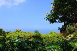 Kuakini Hwy, Kailua Kona HI