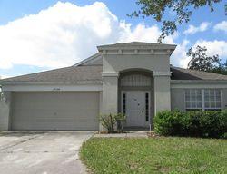 Lexington Oaks Blvd, Wesley Chapel FL