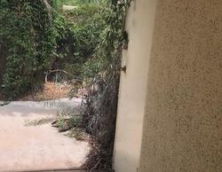 E Alejo Rd, Palm Springs CA