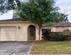 E Groveleaf Ave, Palm Harbor FL