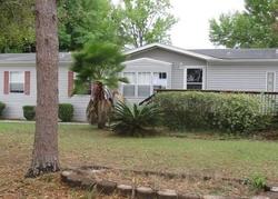 Lodgepole Pine Dr, Dade City FL