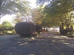 Garden St, Ridgeland MS