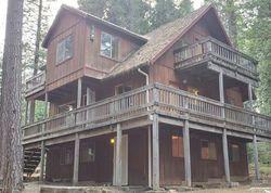 Golden Aspen, Grizzly Flats CA