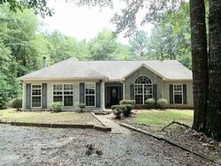Foreclosure - Turkey Roost Ln - Shiloh, GA