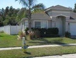 Chapel Pines Blvd, Wesley Chapel FL