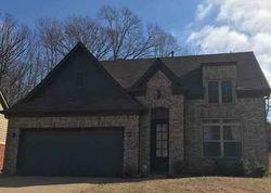 Foreclosure - Bedford Valley Ln - Memphis, TN