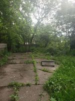 Foreclosure - Lauder St - Detroit, MI