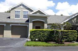 Kings Rd , Palm Harbor FL