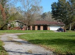 Pre-Foreclosure - Sumpter Rd - Belleville, MI