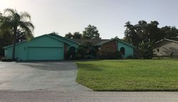 Pre-Foreclosure - Oak Lake Dr - Spring Hill, FL