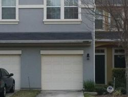 Pre-Foreclosure - Black Walnut Ct - Jacksonville, FL