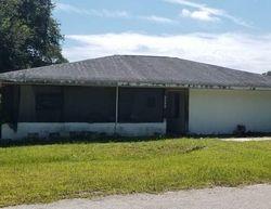 Pre-Foreclosure - Magnolia St - Zolfo Springs, FL
