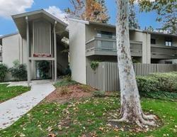 Homestead Ave , Walnut Creek CA