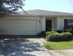Pre-Foreclosure - Sonnet Glen Dr - Wesley Chapel, FL
