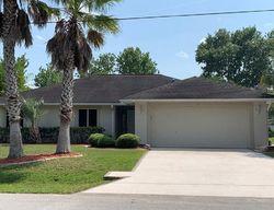 Pre-Foreclosure - Bird Land Pl - Palm Coast, FL