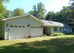Pre-Foreclosure - County Road 135 - Mc Millan, MI