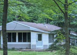 Pre-Foreclosure - Merrio Rd - Grayling, MI