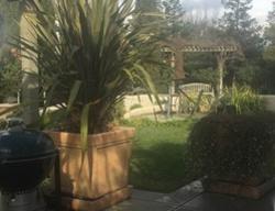 Fennel Ct, Morgan Hill CA