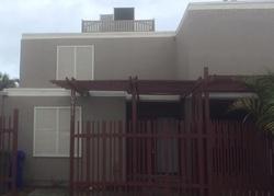 Cedar Ln, Hollywood FL