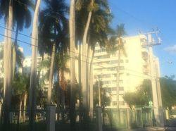 Nw 7th St , Miami FL