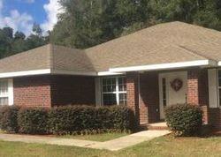 Pre-Foreclosure - Sw Fieldstone Ct - Lake City, FL