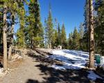 Mosquito Dr, Red Feather Lakes CO