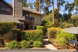 Josselyn Canyon Rd , Monterey CA
