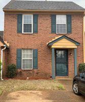 Garden Birch Cv, Memphis TN
