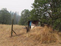 E Evans Creek Rd, Rogue River OR