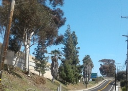 Avenida Del Preside, San Clemente CA