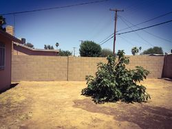Sheriff Sale - W Greenway Rd - Tempe, AZ