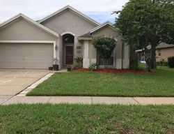 Bay Tree Pl, Wesley Chapel FL