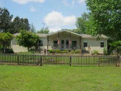 Mays Ln, Stantonville TN